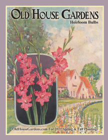 OHG Catalog Cover