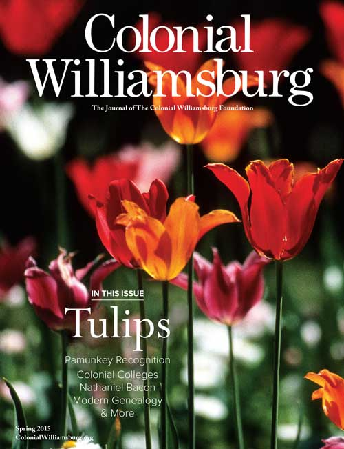 See Our 20,000 Tulips in <i>Colonial Williamsburg</i> Journal