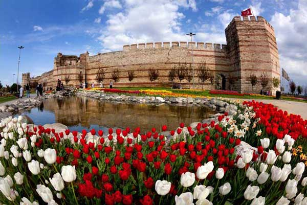 Tour the Instanbul Tulip Festival –  from Home