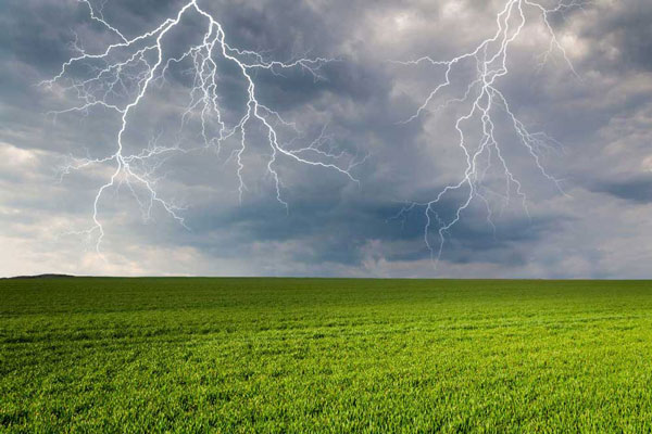 Fertilize Your Garden with . . . Lightning? – www.OldHouseGardens.com