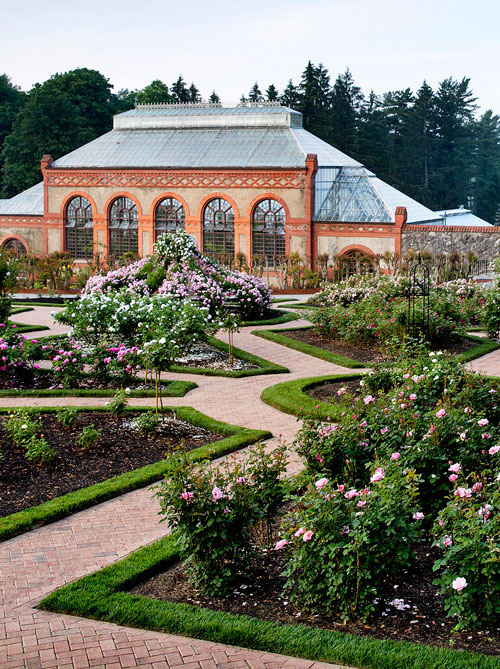 Revamped Website Offers Historic Plant and Garden Riches