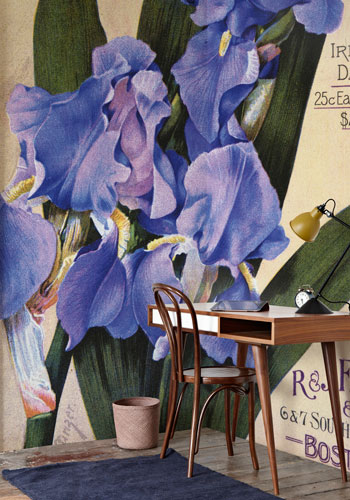 Cover Your Walls with Mural-Sized Botanical Images – www.oldhousegardens.com