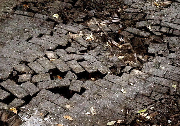 Was Your Street Paved with Wooden Bricks? – www.oldhousegardens.com
