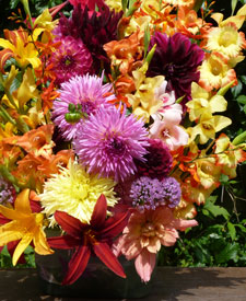 130eee1b Frumpy No More: Glads and Dahlias for Stylish Bouquets